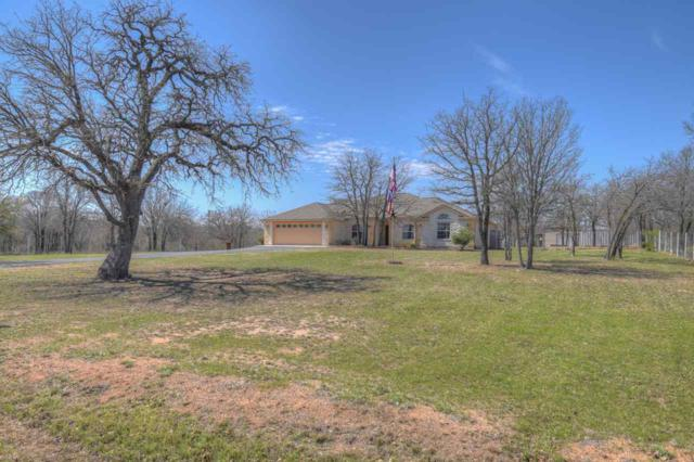 1033 Link Drive, Kingsland, TX 78639 (#143402) :: The ZinaSells Group