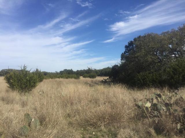 TBD County Road 106, Lampasas, TX 76550 (#143483) :: The ZinaSells Group