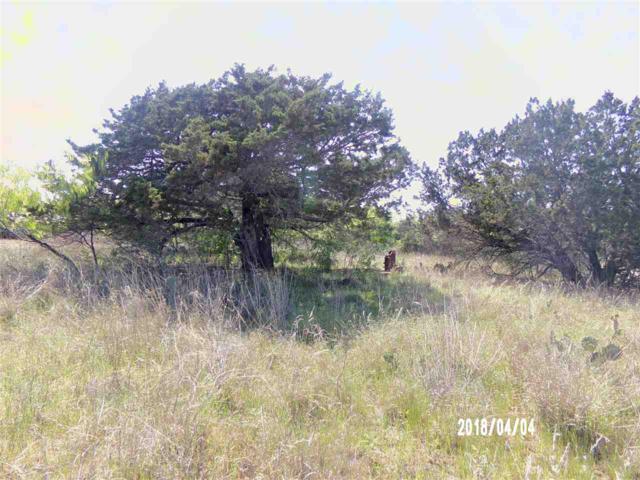 00 Lake Loop, Tow, TX 78672 (#143647) :: The ZinaSells Group