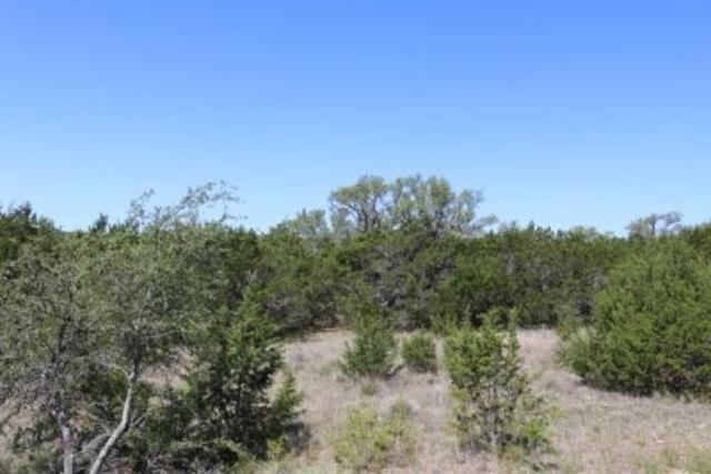 TBD Gray Fox Lane, Bertram, TX 78605 (#144254) :: The ZinaSells Group