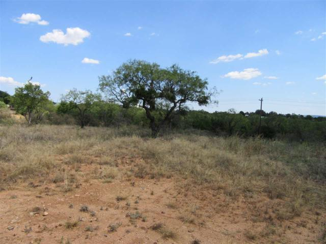 Ollie W, Llano, TX 78643 (#145089) :: The ZinaSells Group