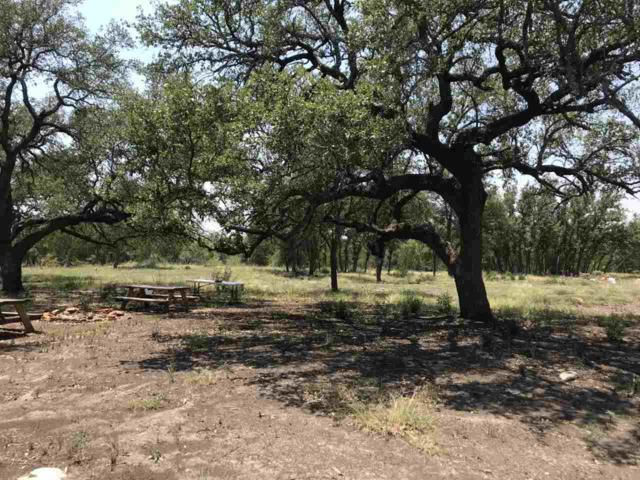 Park View Drive, Marble Falls, TX 78654 (#145123) :: The ZinaSells Group