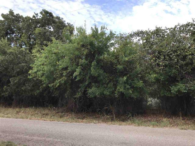 000 Viewcrest Drive, Granite Shoals, TX 78654 (#145268) :: The ZinaSells Group