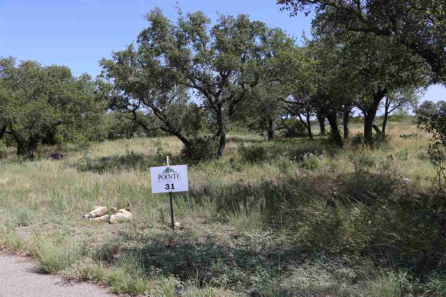 Lot 31 Eagle Feather, Kingsland, TX 78639 (#145309) :: The ZinaSells Group