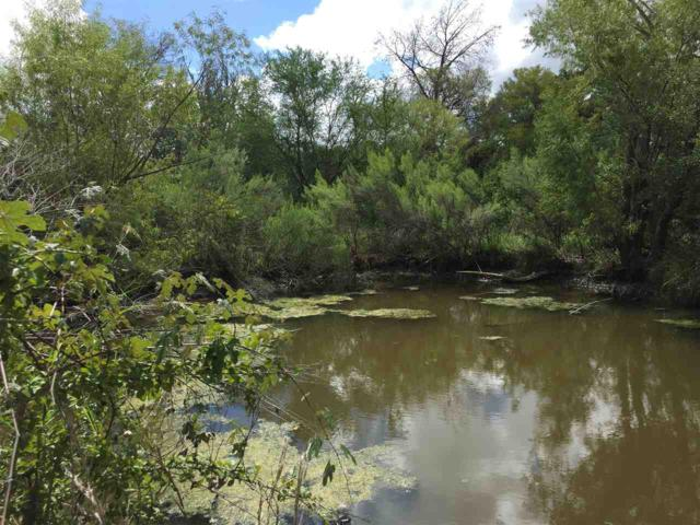 TBD County Road 421, Spicewood, TX 78669 (#145549) :: The ZinaSells Group