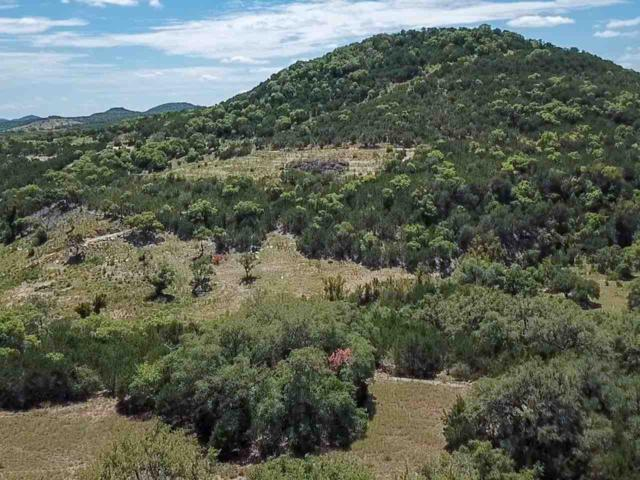 12013 Montana Springs Drive, Marble Falls, TX 78654 (#145882) :: The ZinaSells Group