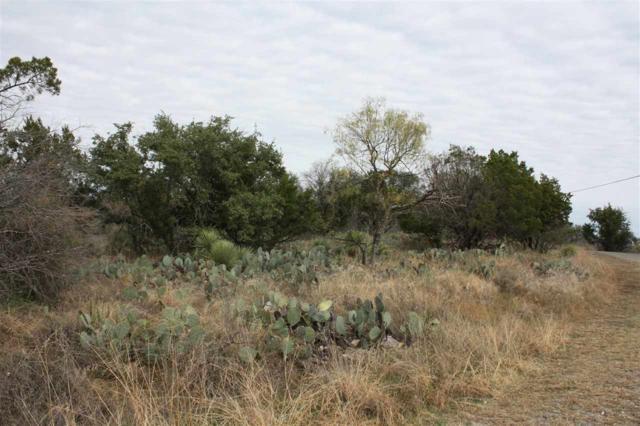 00 N Rockwood Drive, Buchanan Dam, TX 78609 (#146286) :: Zina & Co. Real Estate
