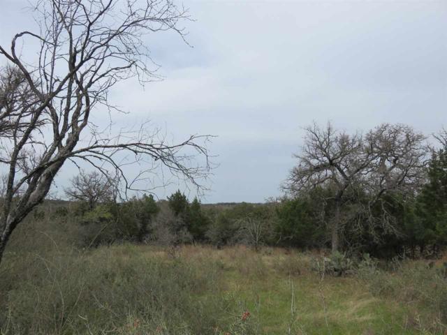 110 Granite Shoals View, Sunrise Beach, TX 78643 (#147169) :: Zina & Co. Real Estate