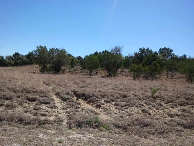 2309 County Road 1020, Lampasas, TX 76550 (#147226) :: Zina & Co. Real Estate