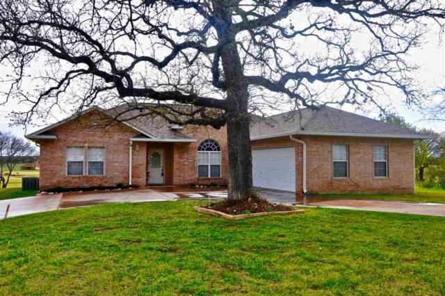700 Skyline Drive, Kingsland, TX 78639 (#147288) :: Zina & Co. Real Estate