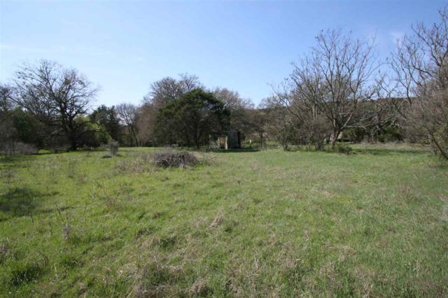 00 Sky Drive, Burnet, TX 78611 (#147295) :: Zina & Co. Real Estate