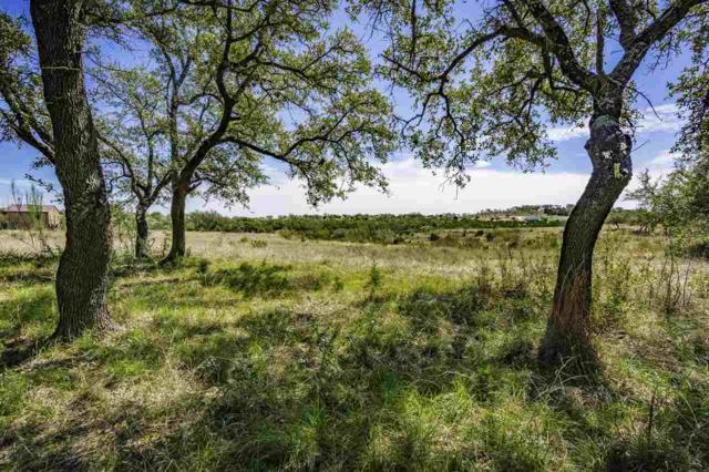 Lot 180 Cedar Mountain Drive, Marble Falls, TX 78654 (#147297) :: Zina & Co. Real Estate