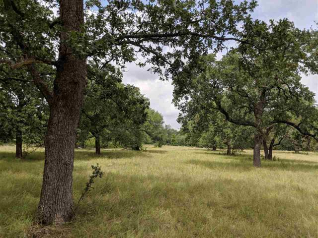 Lot 36 Double Horn Trail, Spicewood, TX 78669 (#147313) :: Zina & Co. Real Estate