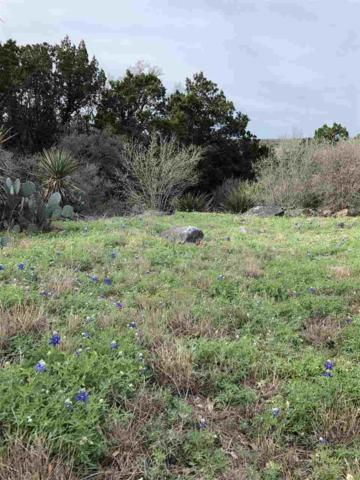 507 Deer Run Road, Horseshoe Bay, TX 78657 (#147328) :: Zina & Co. Real Estate
