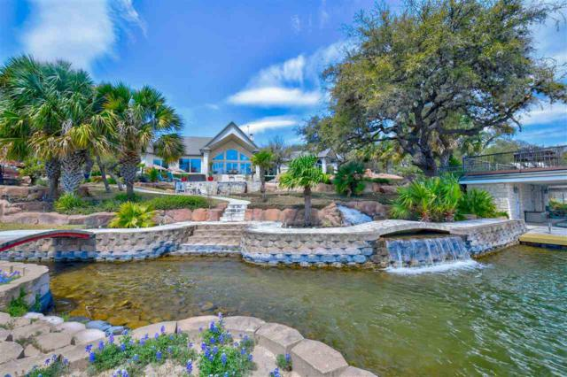 317 Lago Lane, Kingsland, TX 78639 (#147342) :: Zina & Co. Real Estate