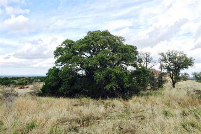 Lot 21 Bergman Bluff, Round Mountain, TX 78663 (#147579) :: Realty Executives - Town & Country