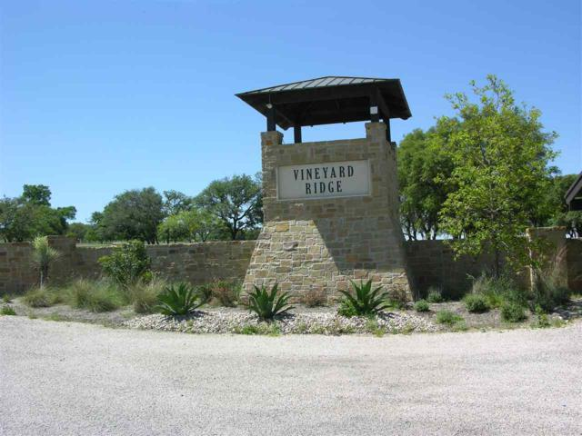 Lot 114 Thriving Oak Dr, Out of Area, TX 78671 (#147640) :: Realty Executives - Town & Country