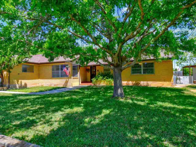 139 Cottonwood E, Granite Shoals, TX 78654 (#147755) :: Zina & Co. Real Estate