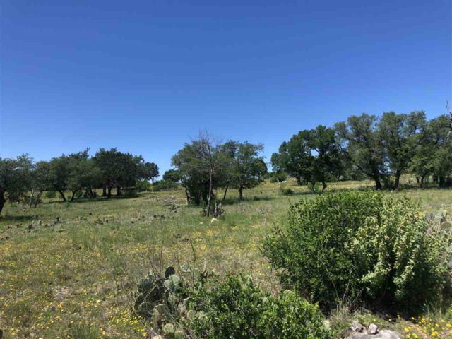 1403 Sioux, Horseshoe Bay, TX 78657 (#147898) :: Zina & Co. Real Estate