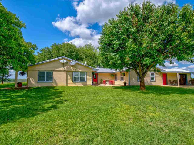 110 Fm 2095, Out of Area, TX 76520 (#148088) :: Zina & Co. Real Estate