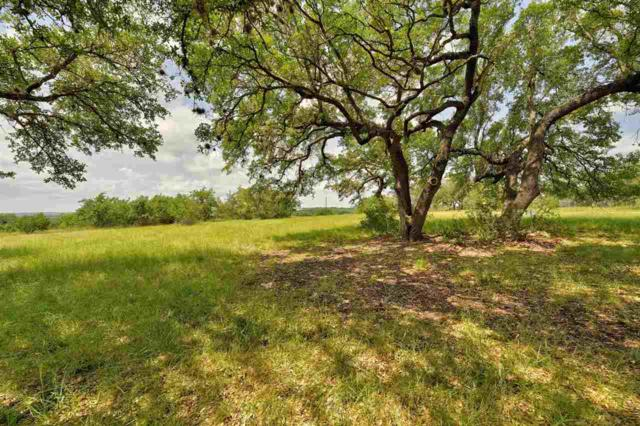 257 Coyote Trl, Round Mountain, TX 78663 (#148092) :: Realty Executives - Town & Country