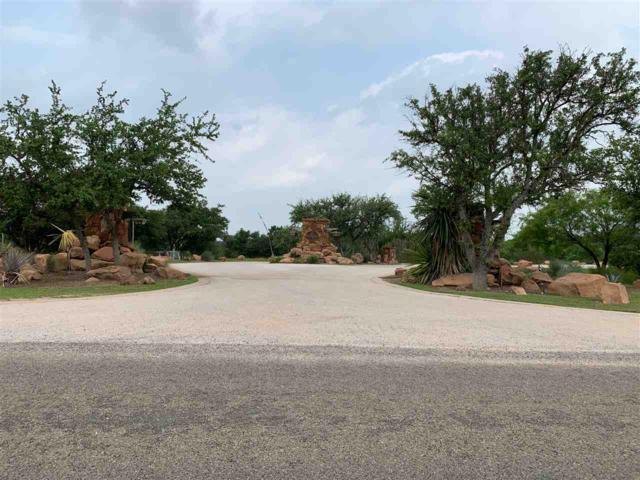 Lot 30 Peninsula Drive, Burnet, TX 78611 (#148143) :: Zina & Co. Real Estate