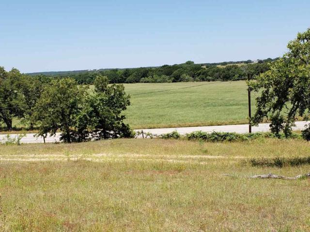 12203 State Highway 16 Highway N, Fredericksburg, TX 78624 (#148437) :: Realty Executives - Town & Country