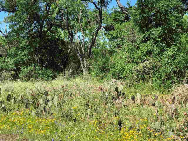 Lots 242, 243 Prairie Creek Drive, Granite Shoals, TX 78654 (#148504) :: Realty Executives - Town & Country