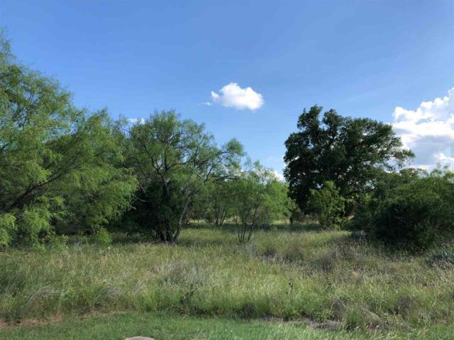 Lot 39 Flint Rock Trail, Spicewood, TX 78669 (#148524) :: Realty Executives - Town & Country