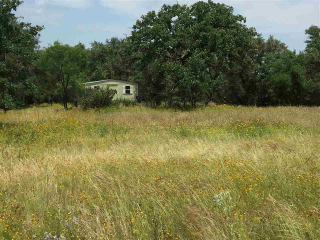 233 Lehne Loop, Buchanan Dam, TX 78609 (#148584) :: Zina & Co. Real Estate