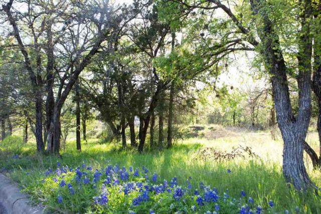 900 Via Viejo, Marble Falls, TX 78654 (#148906) :: Zina & Co. Real Estate