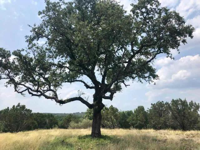 0000 Rocky Summit Court, Spicewood, TX 78669 (#149155) :: Zina & Co. Real Estate