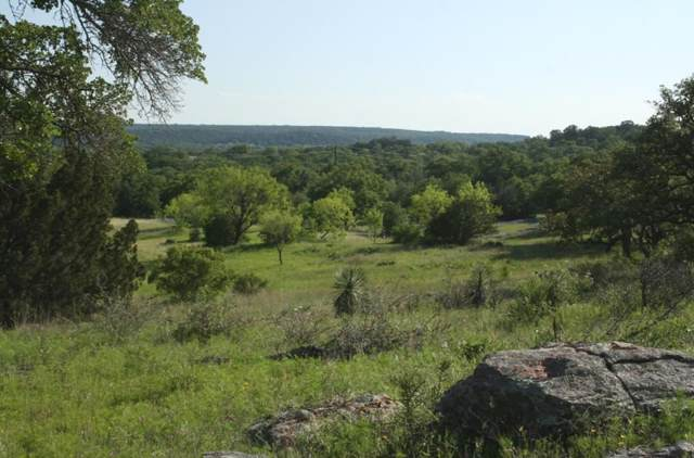 301 Rocky Hollow Drive, Burnet, TX 78611 (#149613) :: Zina & Co. Real Estate