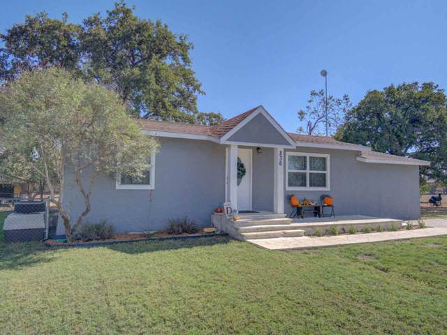 236 Golden Beach Dr, Buchanan Dam, TX 78609 (#149951) :: Zina & Co. Real Estate