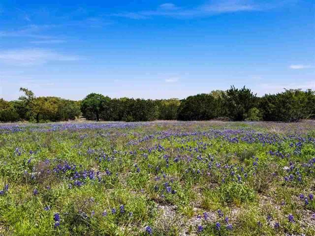 249 Rain Lily, Burnet, TX 78611 (#150104) :: Zina & Co. Real Estate