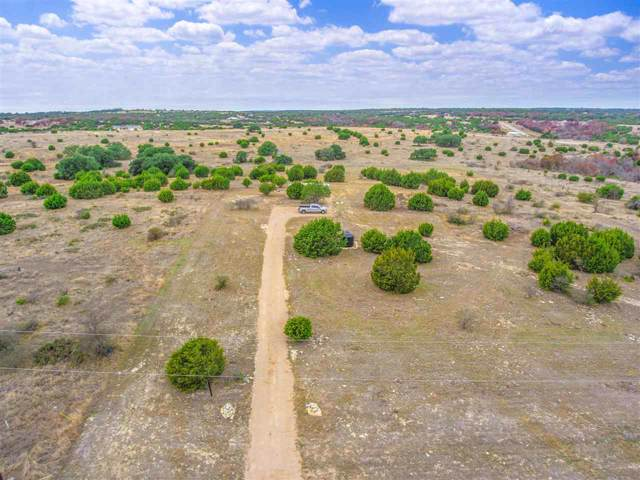 569 Saddle Ridge Drive, Bertram, TX 78605 (#150371) :: Zina & Co. Real Estate