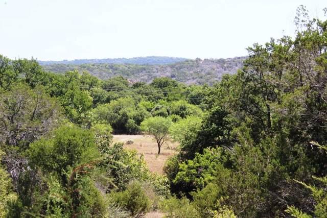 100 Rocky Hollow Ranch Drive, Burnet, TX 78611 (#150378) :: Zina & Co. Real Estate