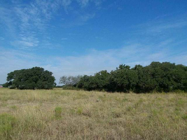 32.93 County Road 225, Out of Area, TX 76527 (#150579) :: Zina & Co. Real Estate