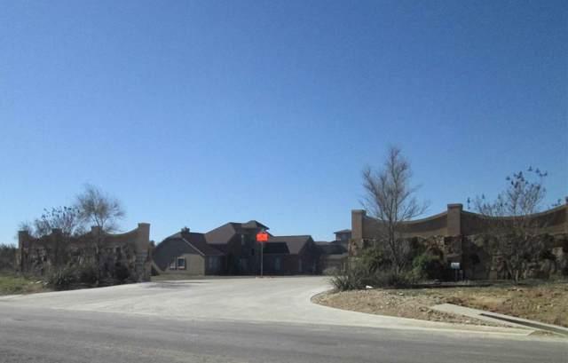 104 Pradera Coves, Bertram, TX 78605 (#150988) :: Zina & Co. Real Estate