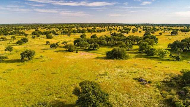 6572 County Road 409 Road, Llano, TX 76885 (#151089) :: Zina & Co. Real Estate