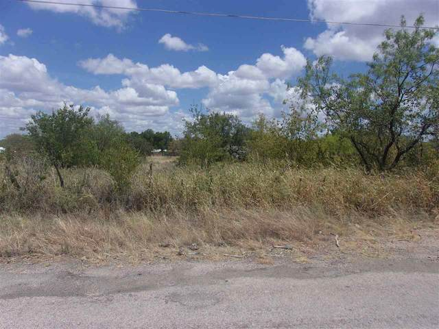 Wallace St. E, Llano, TX 78643 (#151136) :: Zina & Co. Real Estate