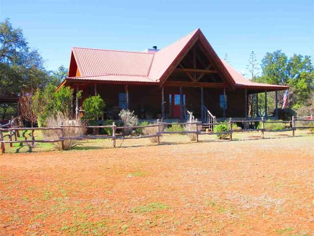 388 Cougar Pass, Llano, TX 78643 (#151144) :: Zina & Co. Real Estate