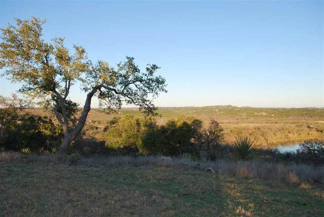 2050 County Road 402, Marble Falls, TX 78654 (#151163) :: Zina & Co. Real Estate