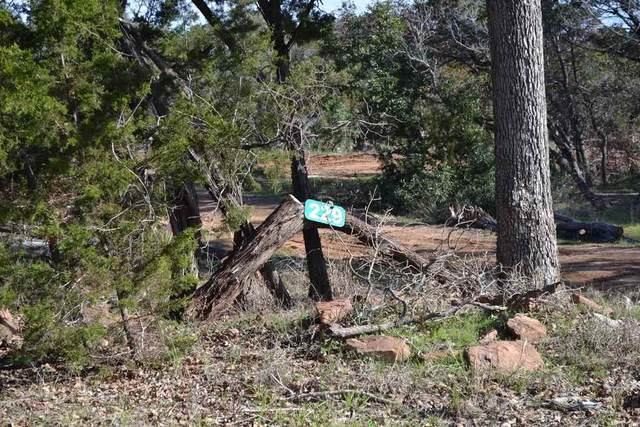 229 Yucca, Burnet, TX 78611 (#151166) :: Zina & Co. Real Estate
