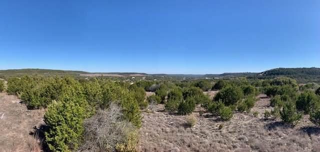 123 Oak Crest Drive, Bertram, TX 78605 (#151197) :: Zina & Co. Real Estate