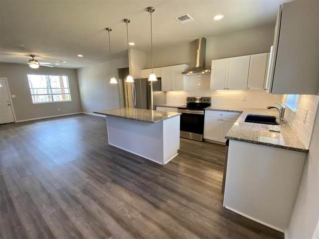 116 Midnight Sun Drive, Spicewood, TX 78669 (#151287) :: Zina & Co. Real Estate