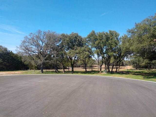 2401 Cr 305, Round Mountain, TX 78663 (#151491) :: Zina & Co. Real Estate