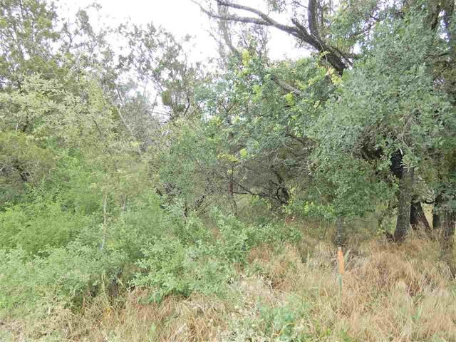 TBD Taylor Drive, Marble Falls, TX 78657 (#151623) :: Zina & Co. Real Estate