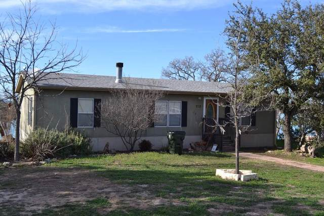 712 Chaparral N, Burnet, TX 78611 (#151657) :: Zina & Co. Real Estate
