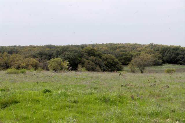 00 Waterbuck Way S, Lampasas, TX 76550 (#151671) :: Realty Executives - Town & Country